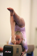 Edgewater Classic | Fall Into Edgewater | Gymnastics Invitationals